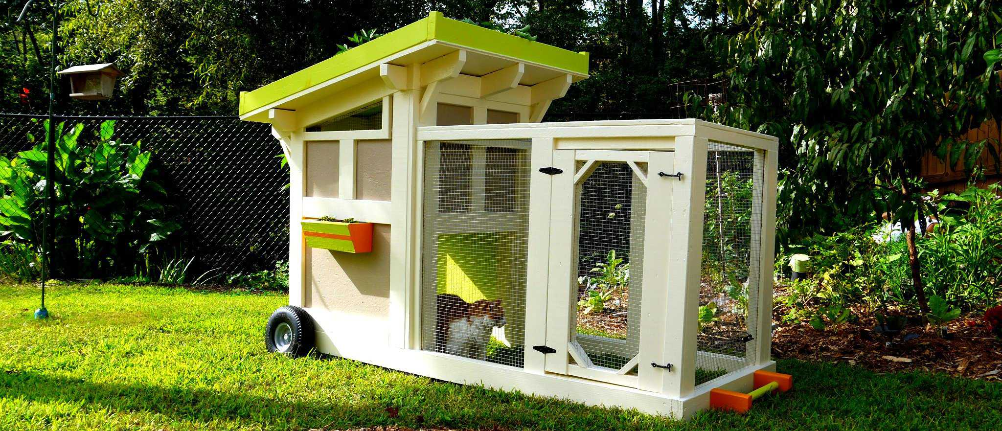 The quacker box a green roof duck house or duck coop for Duck run designs