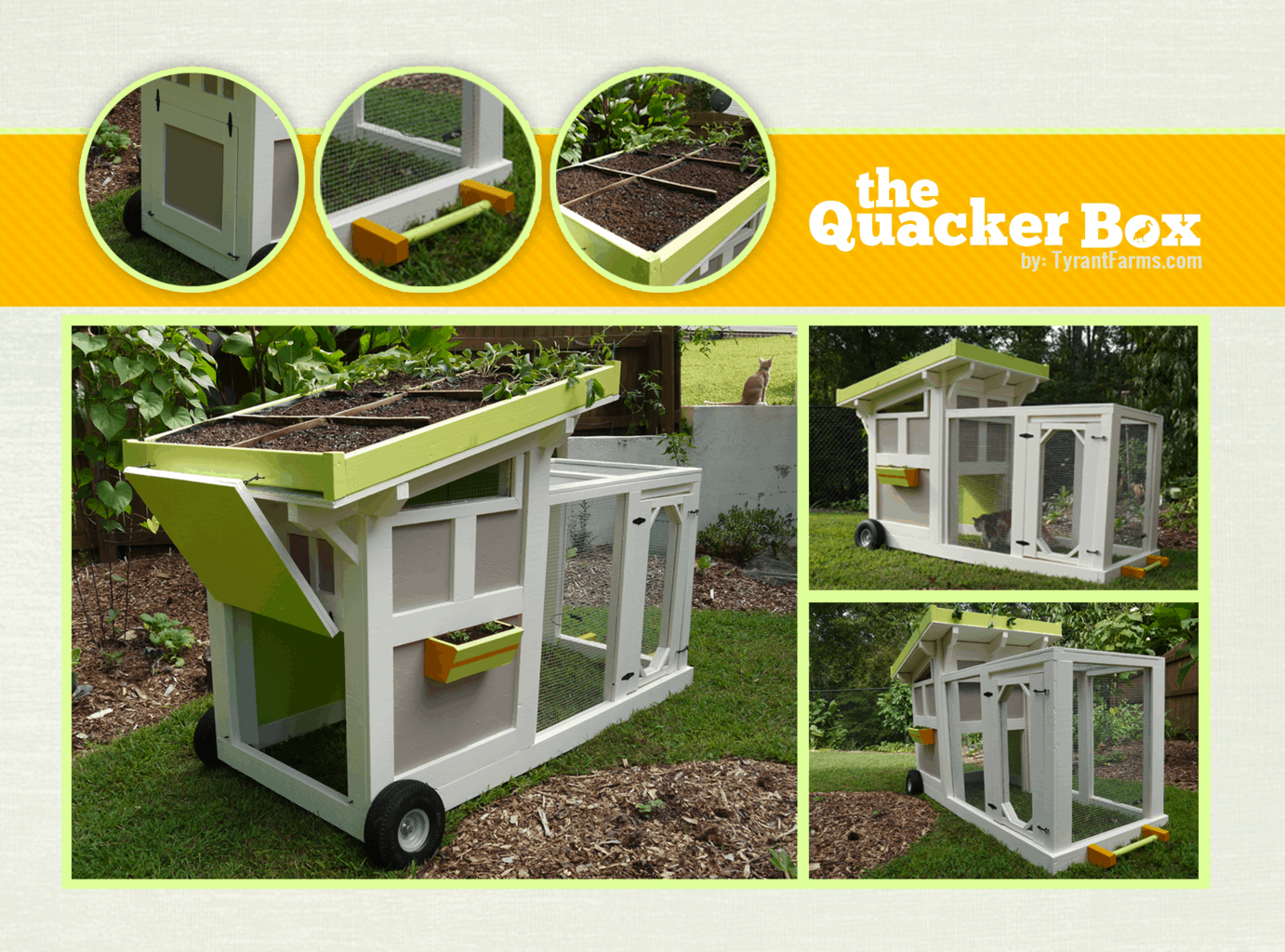 This is the Quacker Box we made for our ducks. If you want to make your own mobile duckmobile, click here to learn how. If you want to buy a duck or chicken coop that takes less carpentry skills, see the links below.