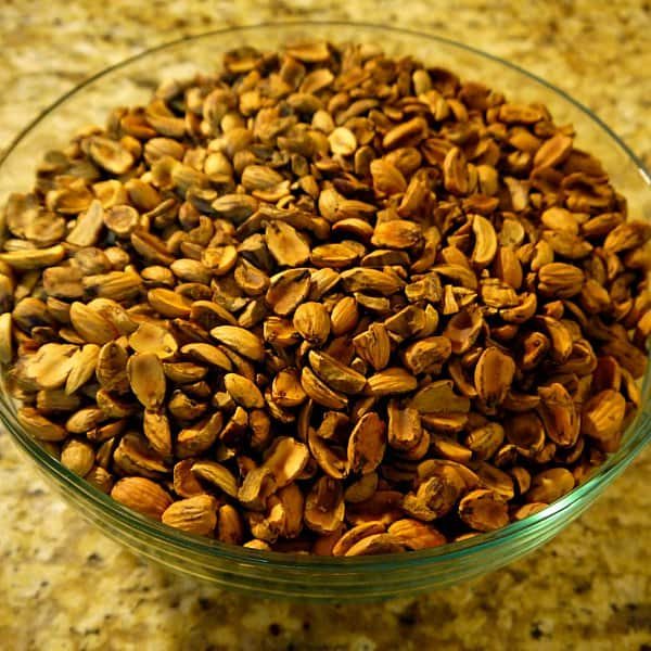 DIY: How to Make Acorn Flour at www.TyrantFarms.com - Acorns no shells or skins