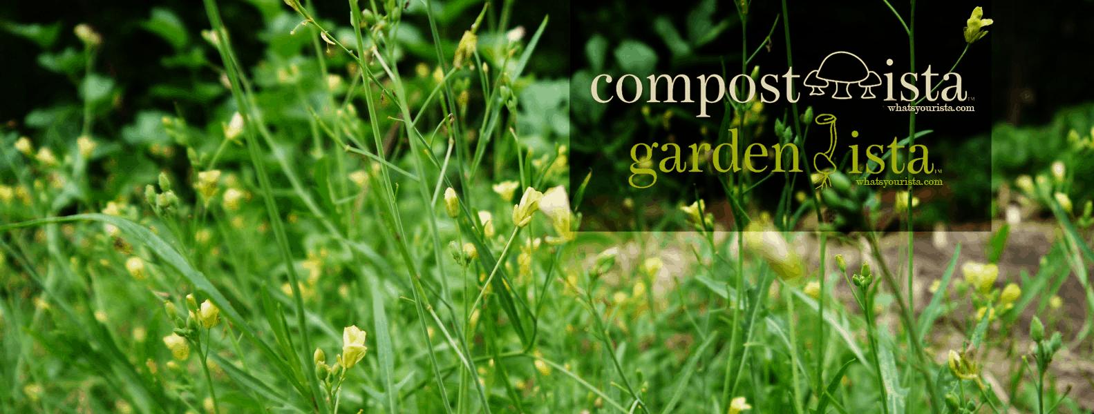 Gardenista and Compostista at tyrantfarms.com