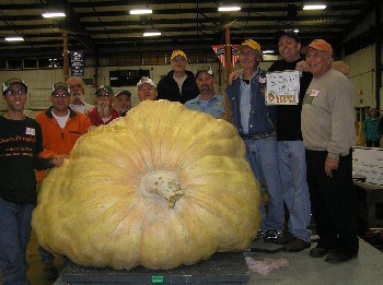 World's largest pumpkin weighing in at 2009 pounds