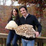 Two of the world's best edible and medicinal mushrooms; we found these huge lion's mane and maitakes in fall 2012. Photo by Tyrant Farms