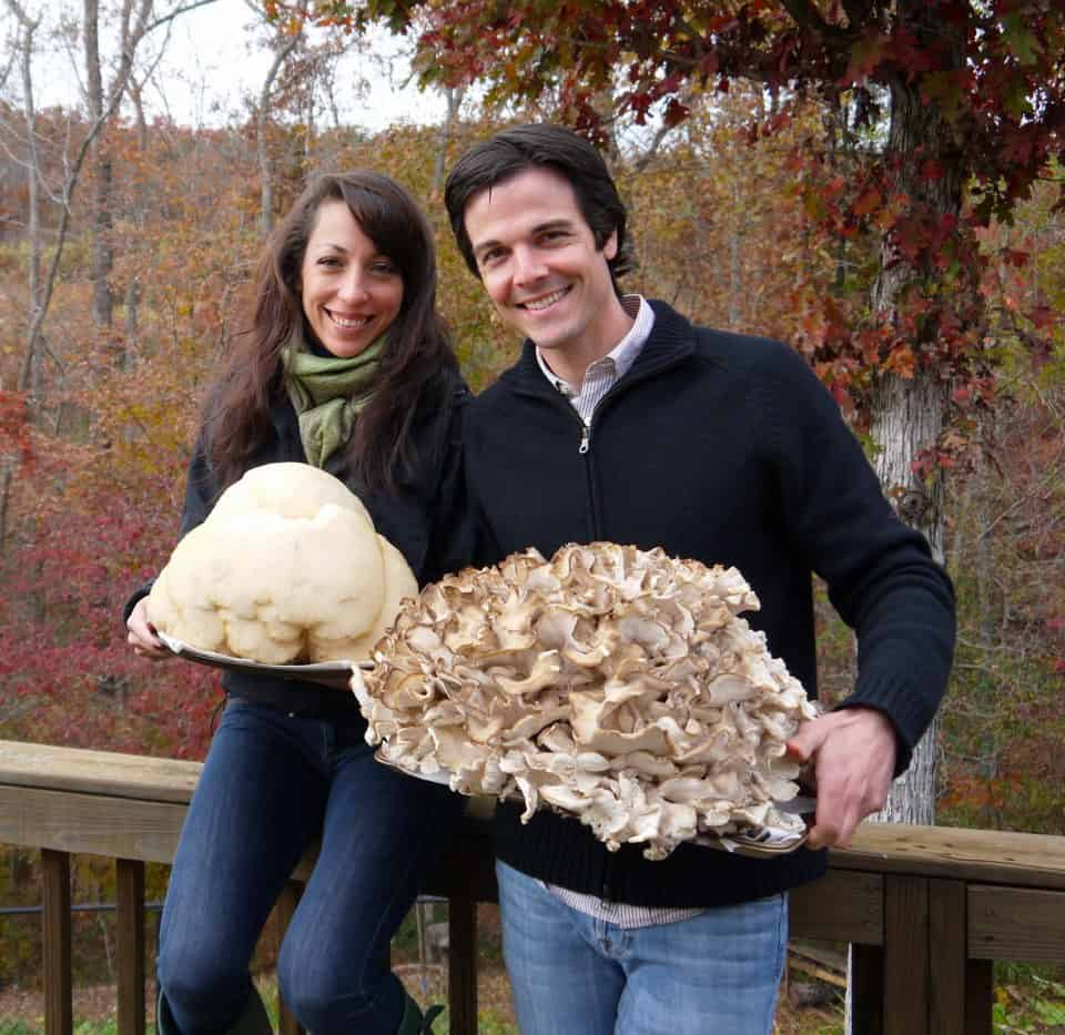 Giant Lions Mane (left) and Maitake mushrooms we found in 2012.