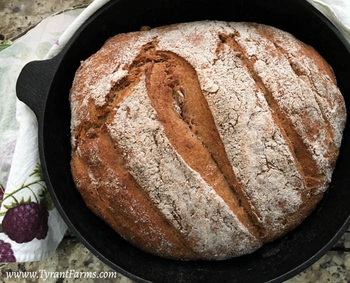 5 Minute Artisanal Bread // TyrantFarms.com