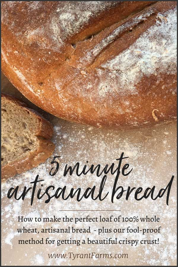 How to make the perfect loaf of 100% whole wheat, artisanal bread - plus our fool-proof method for getting a beautiful crispy crust! #wholewheat #bakingbread #tyrantfarms