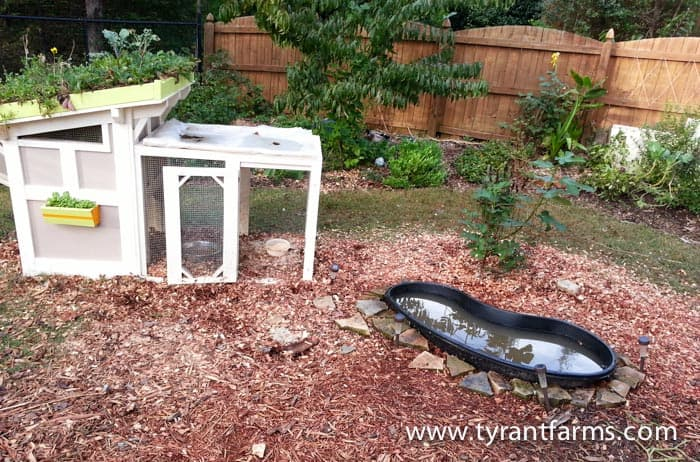 Backyard Duck Ponds how to build a diy backyard pond with self-cleaning biofilter