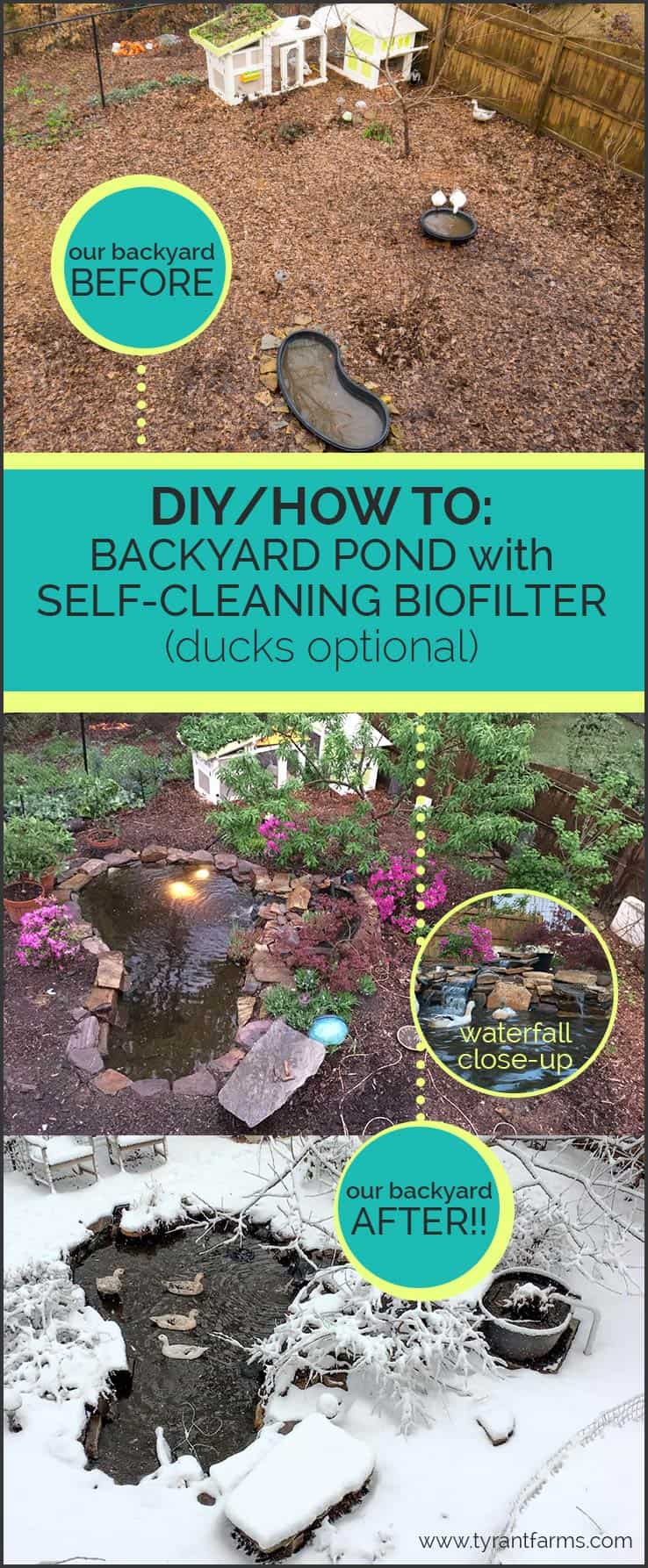 How to build a backyard pond with a diy biofilter tyrant for Keeping ponds clean without filter