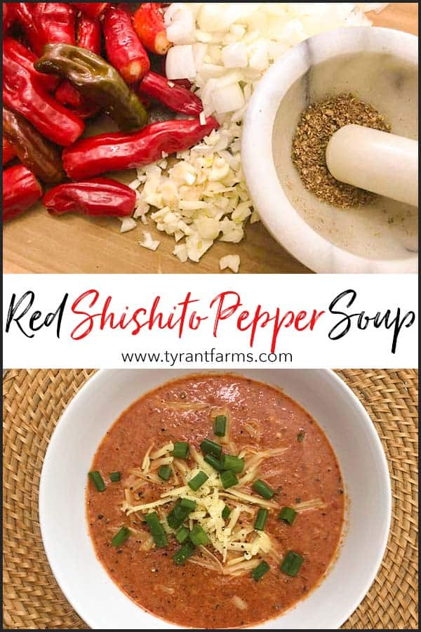 Quick & Easy Red Shishito Pepper Soup