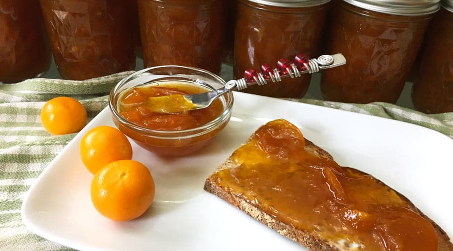 calamondin marmalade on toast