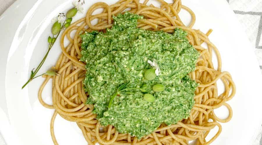 stinging nettle pesto recipe
