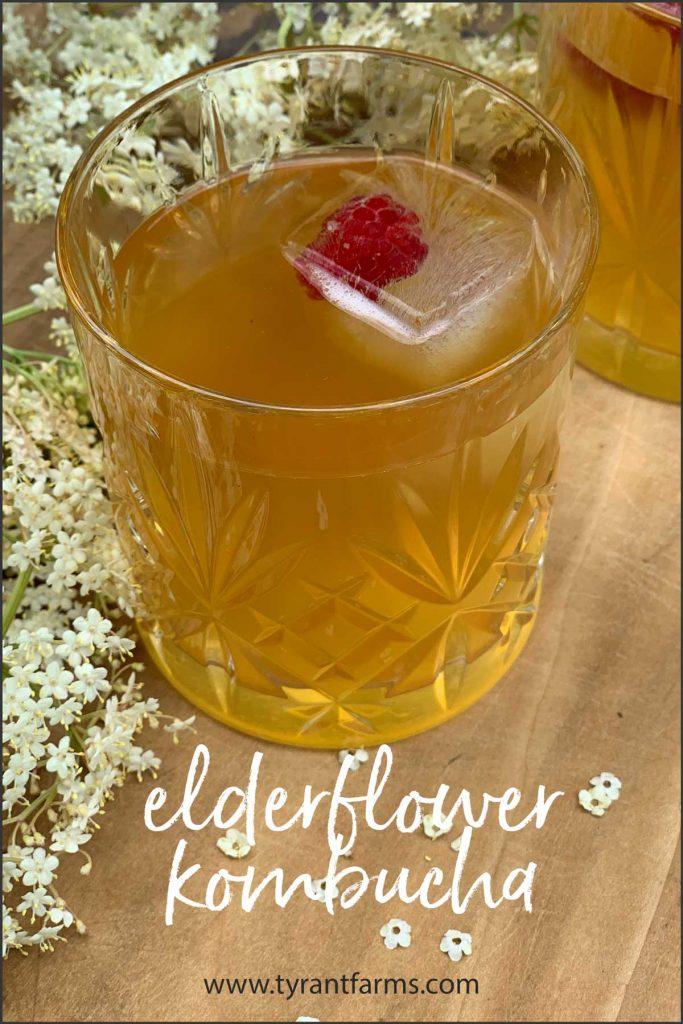 Recipe: elderflower kombucha